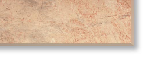 ppic1 038.7879. PP edging Marble beige rose minip