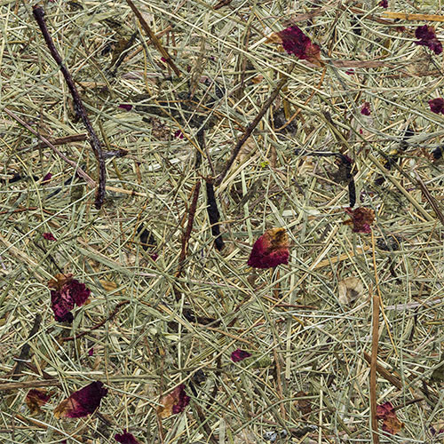 ipic1 Sample decor surface Hay with rose petals,