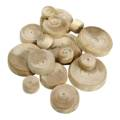 ppic1 Natural wood knot patches