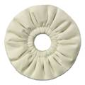 ppic1 Buffing discs